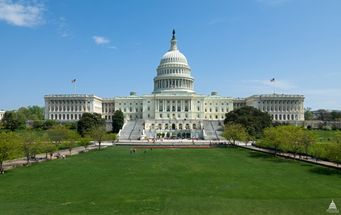 U.S. House